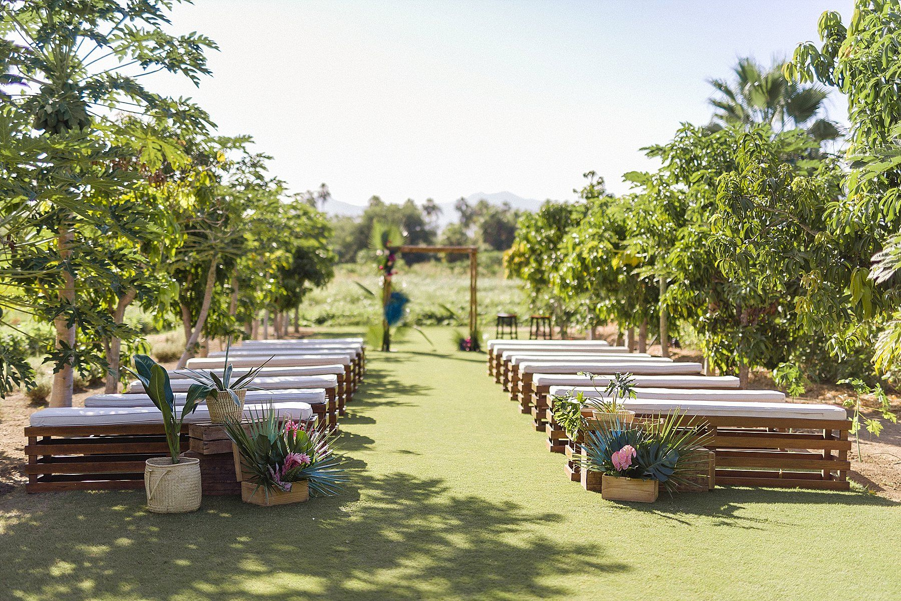 Destination Wedding at Flora Farms in Los Cabos, Mexico. Wedding Planning by Cabo Wedding Services and Photography by Sara Richardson.